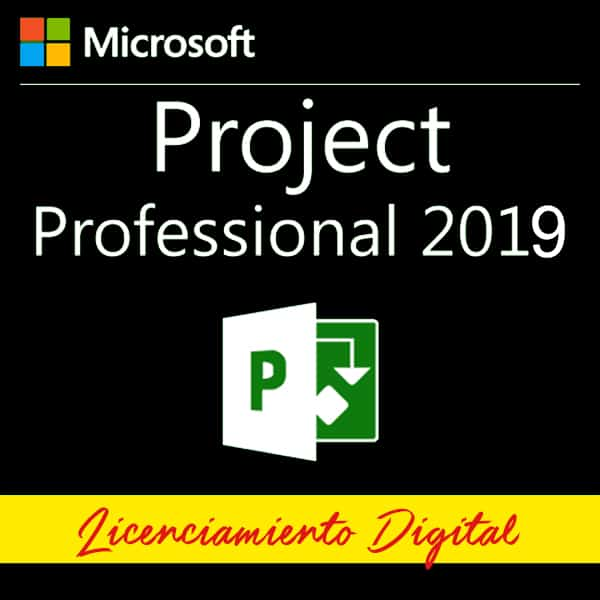 Microsoft Project Professional 2019 Para 1 Pc