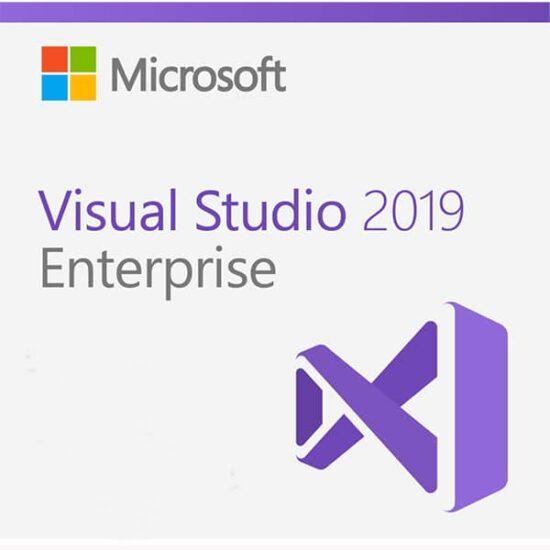Visual Enterprise portada