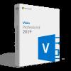 Microsoft Visio Professional 2019 Para 1 Pc | MAYOREO (Pack de 10 unidades)